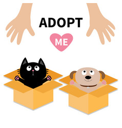 Human hand adopt me dog cat inside opened vector