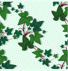 leaves a climbing plant on a green background vector image
