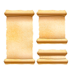 Old textured papyrus scrolls different shapes vector