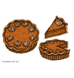 set hand drawn colored pumpkin pie vector image