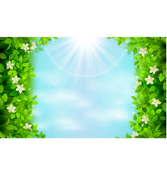 Spring and summer branches with fresh green leaves vector