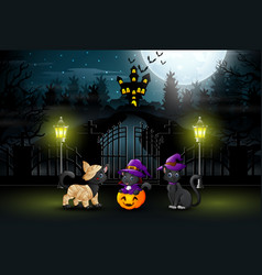 three cute cats at night time halloween parties vector image