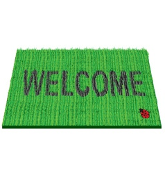 welcome rug vector image