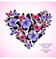 Colorful butterflies heart shape pattern vector image vector image