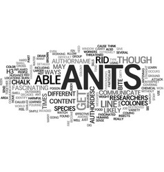 Ants how to get rid ant problems text word vector