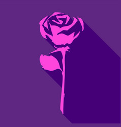 bright pink rose vector image
