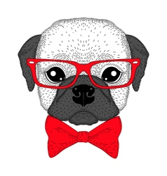 Cute french bulldog boy portrait with bow tie vector