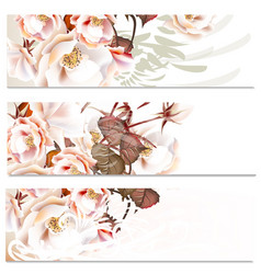 floral backgrounds set with roses for wedding vector image