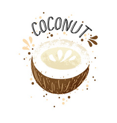 hand draw coconut brown vector image
