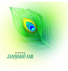 Peacock feather for happy janmashtami vector
