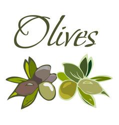 tasty veggies olives vector image