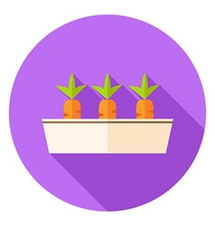 Carrots Vegetables in Garden Pot Circle Icon vector image vector image