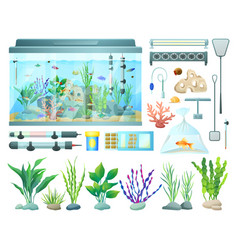 aquarium equipment and varied seaweed collection vector image