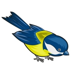 Bird titmouse Tit vector