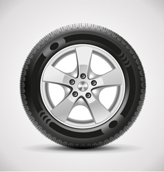 Car tire vector
