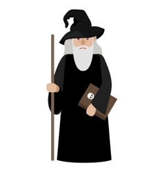 Cartoon wizard vector image