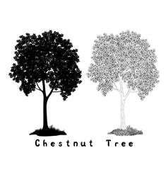 Chestnut tree Silhouette Contours and Inscriptions vector