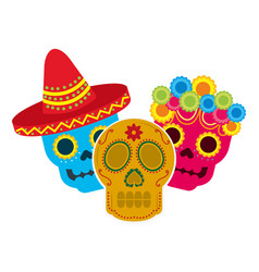 mexican skulls hat flowers decoration vector image