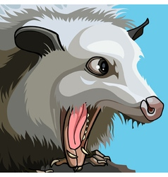 Muzzle white beast with open mouth vector