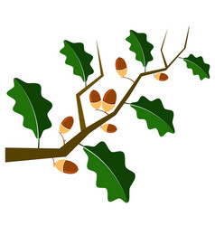 ripe acorn icon autumn oak branch and leaves logo vector image