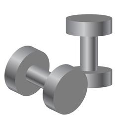 dumbbells vector image vector image