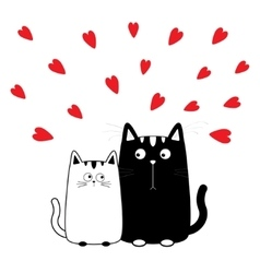 Cute cartoon black white cat boy and girl Kitty vector image