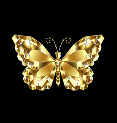 Gold polygonal butterfly vector