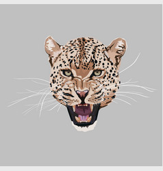 graceful leopard savana cat elegant poster vector image