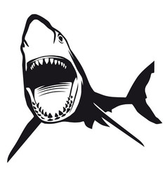 Great shark with opened mouth vector