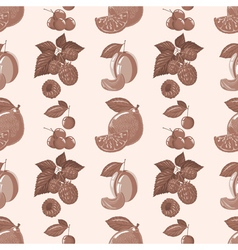 pattern of lemon raspberry cherry plum vector image