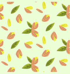 pistachio nuts cartoon vector image