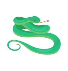 Python boa snake vector