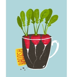 Growing Radish with Green Leafy Top in Pot vector image vector image