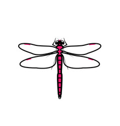 dragonfly logo symbol icon sign pink color vector image