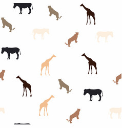 giraffe leopard and zebra on white background vector image