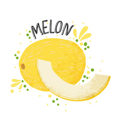 Hand draw melon yellow ripe vector