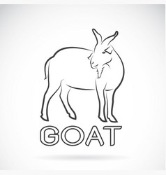 a goat on a white background wild animals vector image