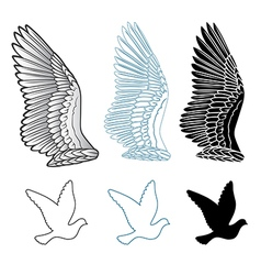 Pigeon wings and dove linear silhouette vector image