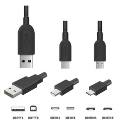 USB Plugs vector image