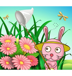 A rabbit catching dragonflies vector image