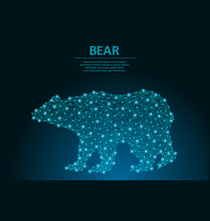bear made points and lines polygonal wireframe vector image