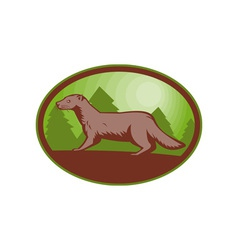 European mink side view vector