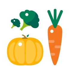 Fresh orange pumpkin carrots and broccoli vector