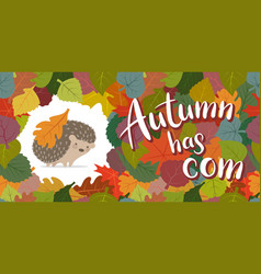 Image an autumn hedgehog framed from leaves vector