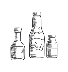 Ketchup mustard and sea salt condiments vector