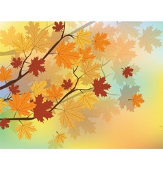 Orange Autumn Maple Leaves vector image