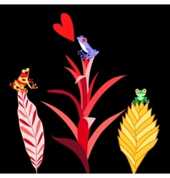 multi colored frogs vector image