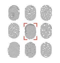 fingerprints or fingertip print identification vector image