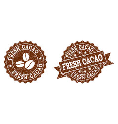fresh cacao stamp seals with grunge texture in vector image