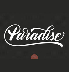 hand drawn lettering paradise elegant modern vector image